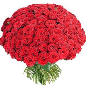 Букет из 101 красной розы B049