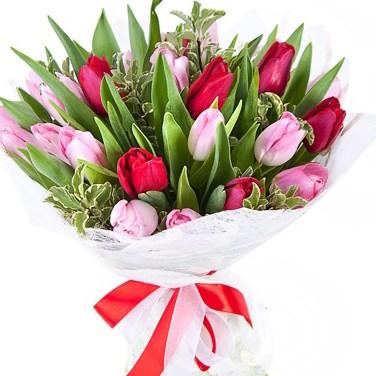 Букет из 25 тюльпанов В145