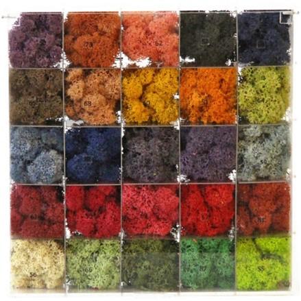 """Стабилизированный мох Ягель """"Цветной"""", 500 гр H010"""