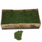 """Стабилизированный мох Ягель """"Moss green"""", 500 гр H006"""