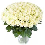 Букет из 101 белой розы B084