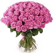 Букет из 101 розовой розы B048