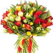 Букет из 51 тюльпана B022