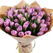 Букет из 51 тюльпана B144