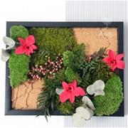 Картина из стабилизированных растений D012