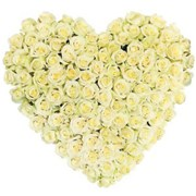 Сердце из 101 розы A071