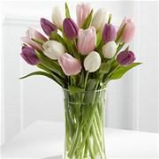 Тюльпан розовый (шт)